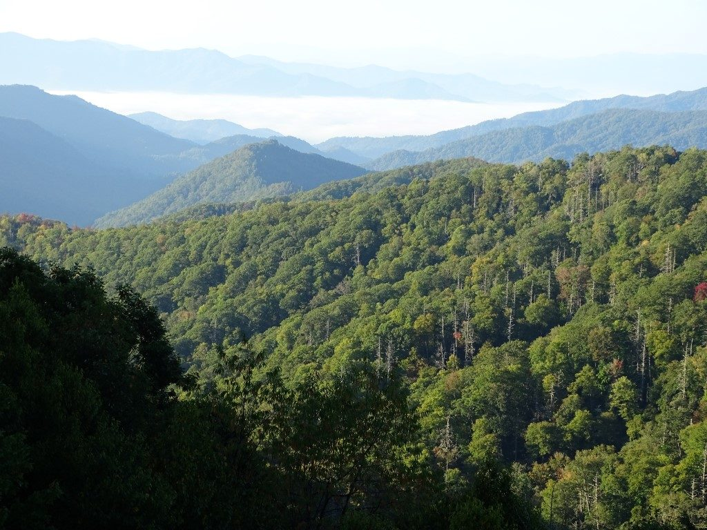 image of blue ridge parkway landscape