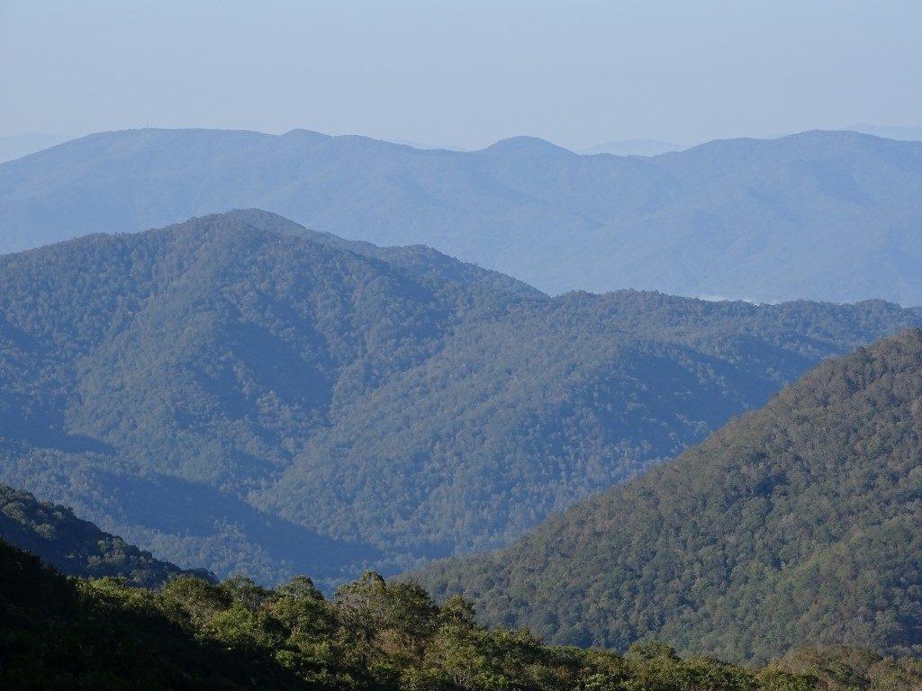Blue Ridge Parkway Landscape